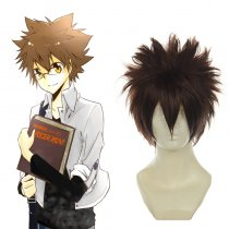 Rulercosplay Reborn! Sawada Tsunayoshi Brown Heat Resistant Fiber Cosplay Anime Wigs Wholesaler Resa