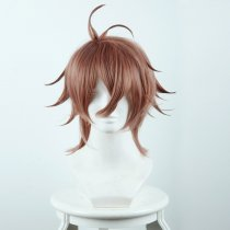 Rulercosplay Fate/Apocrypha Sieg Short Brown Ombre Anime Cosplay Wigs