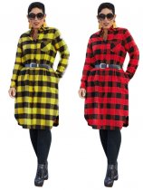Plaid Long Sleeve Casual Blouse Dress Without Belt TEN-3304