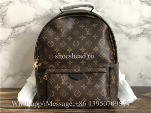 Original Louis Vuitton Monogram Palm Springs Backpack MM Brown M41561