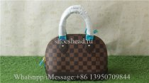 Louis Vuitton Brown Medium Bag