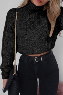 Black Turtleneck Solid crop top Cotton Pure Long Sleeve  Sweaters & Cardigans MMY01022