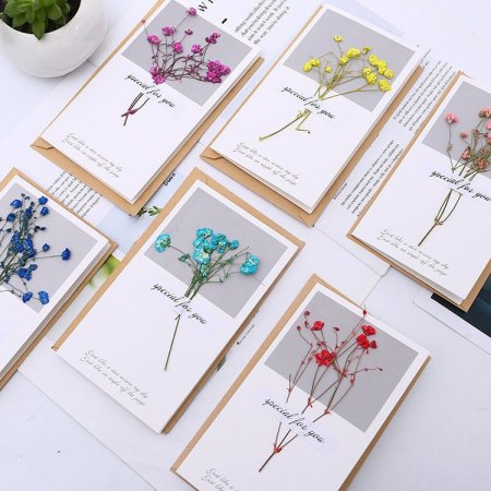 Dry Flower Greeting Cards