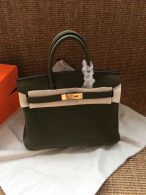 Hermes Birkin 25CM Cowhide Leather Dark Green/Gold Hardware Tote Bag