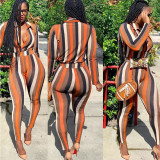 2020 Fashion Sexy Women's Striped Skinny Long Pencil Pants Pants Long Sleeve Women's Casual Two-Piece Set 202003307115