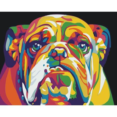 DIY Painting By Numbers - Colorful Dog(16 x20  / 40x50cm)
