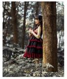 Brocade Garden - Sweet Gothic Lolita JSK Dress