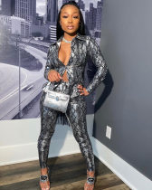 WGW Trendy Snake Skin Print Two Piece Pants Suit SHA6128