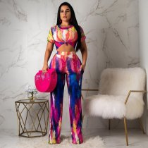 WGW Fashion Print Short Sleeve Crop Tops And Pants Suit YMT6089