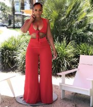 WGW Sexy Sleeveless Crop Top High Split Pants Two Piece Sets SHA6065