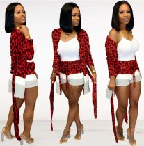 WGW Women Long Cardigan And Shorts Leopard Printed Two Piece Sets FNN8302
