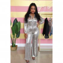 WGW Plus Size Silver Long Sleeve One Piece Jumpsuits IV8054