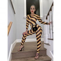 WGW Sexy Striped Mesh Bodysuit And Pants Two Piece Sets YF9565