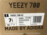 Adidas Yeezy Boost 700 V3 Arzareth