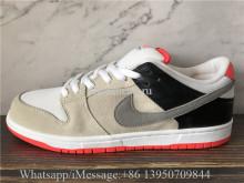 Nike Dunk SB Low Pro ISO