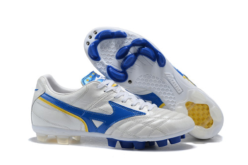Mizuno Sports Shoes