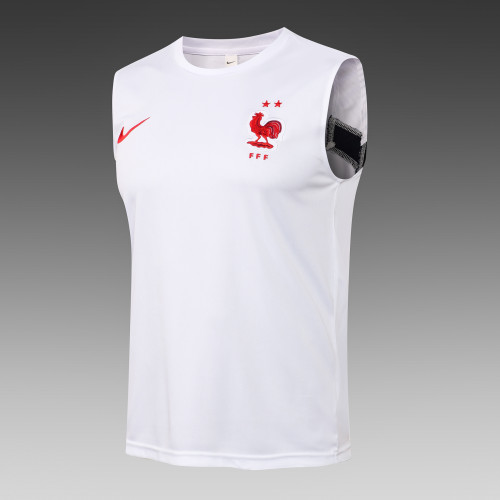 France Training Jersey 21/22 White