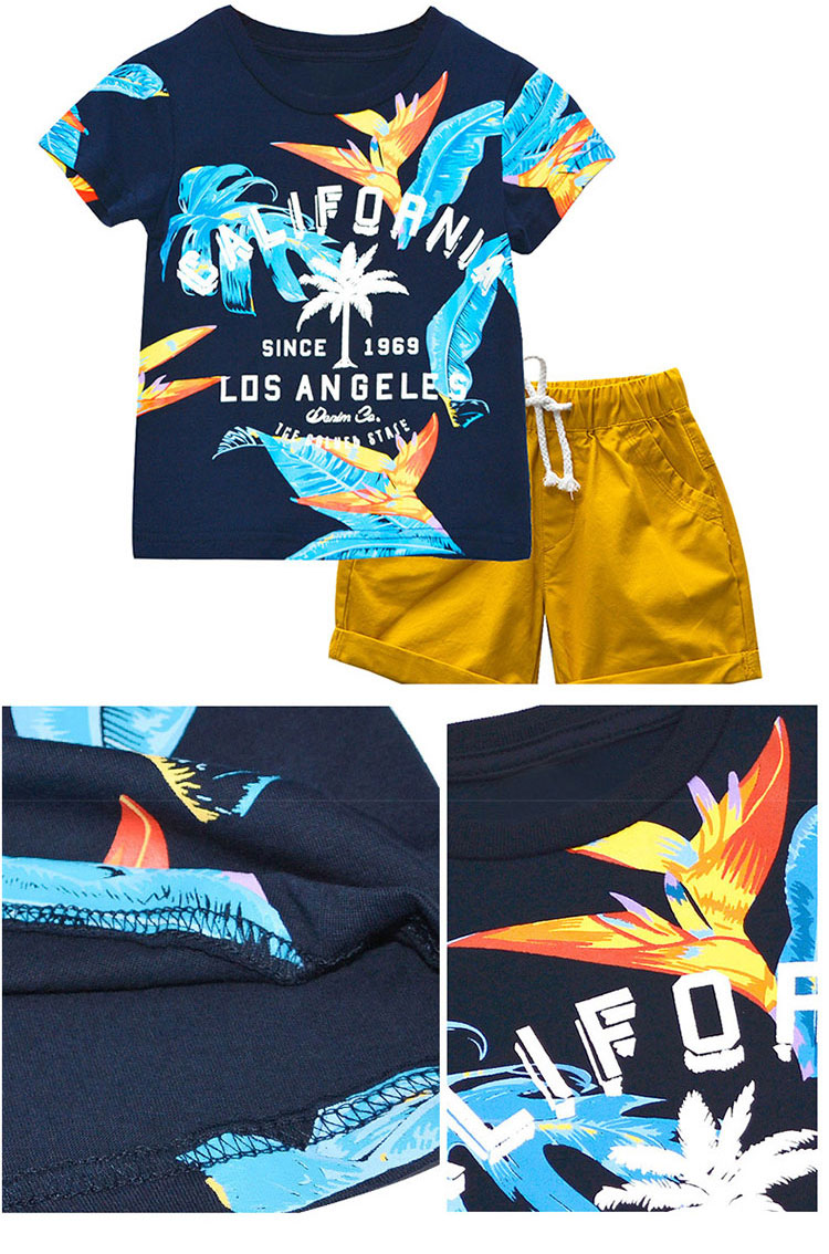 Fashion Printed Summer Kids Clothes Boys Clothing Sets