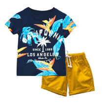Fashion Printed Summer Kids Clothes Boys Clothing Sets