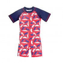 High Quality Children Swimwear One-Piece Boys Swimsuit
