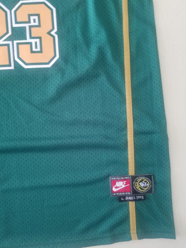 LeBron James 23 Irish High School Green Basketball Jersey