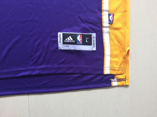 Kobe Bryant 24 Purple Basketball Club Shorts