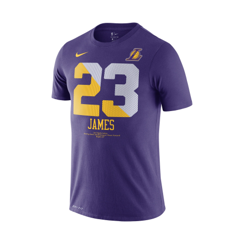 Men's Los Angeles Lakers LeBron James Purple City Edition Name & Number Performance T-Shirt