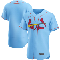 Men's Light Blue Alternate 2020 Authentic Team Jersey