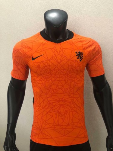 Player Version Holland 2020 Home Authentic Jersey