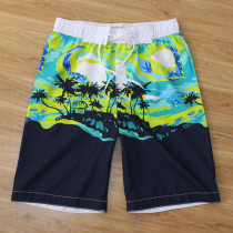 Men's 2020 Fashion Brands Beach Shorts AFM013