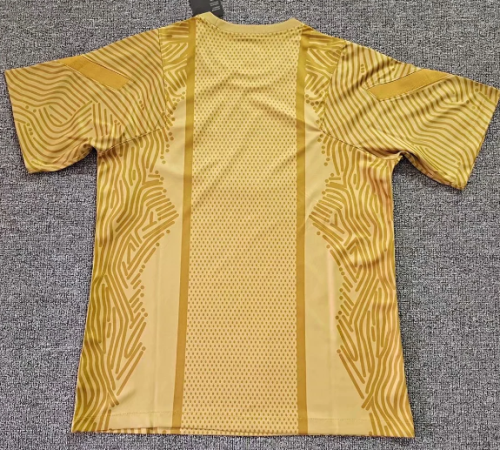 Thai Version Paris Saint-Germain 20/21 Training Jersey - Golden