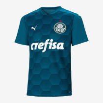 Thai Version Palmeiras 2020 Training Jersey - Blue