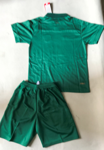 Ireland 2020 Home Soccer Jersey and Short Kit