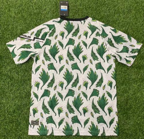 Thai Version Nigeria 20/21 Pre-Match Jersey