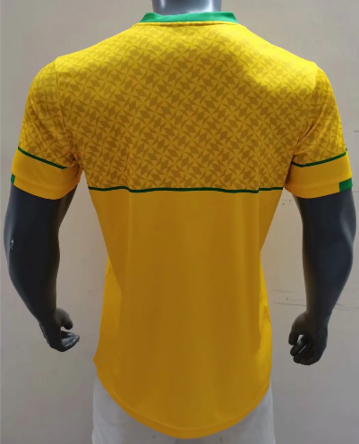 Thai Version South Africa 2020 Home Soccer Jersey