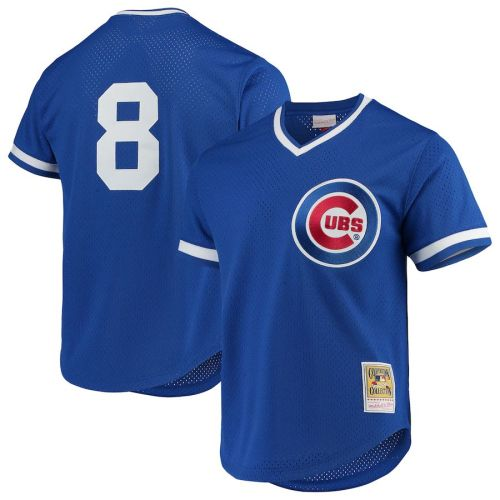 Men's Andre Dawson Royal Cooperstown Collection Mesh Batting Practice Throwback Jersey