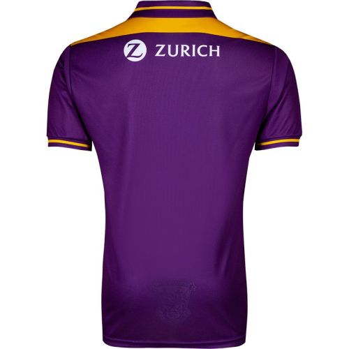 Wexford GAA 2 Stripe Men's Home Jersey