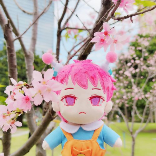 Anime The Disastrous Life of Saiki K. Saiki Kusuo Cosplay Cute Plush  Stuffed Change Dolls Toy