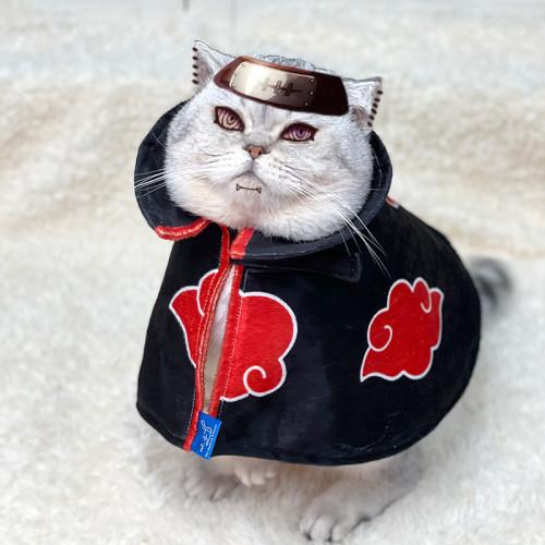 Anime Naruto Red Cloud Akatsuki Pet Costume Cat Clothes Cloak Cosplay Outfits