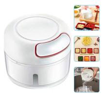 Mini Garlic Slicer Manual Food Chopper Grinder Mincer Household Mincing Machine
