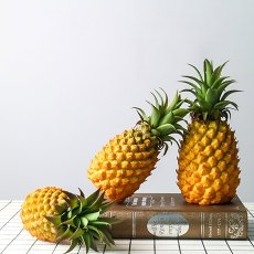 Pineapple Home Decor Free Shipping