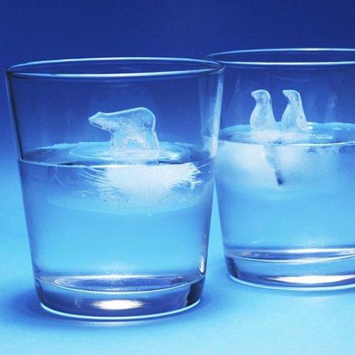 Polar Ice Mold