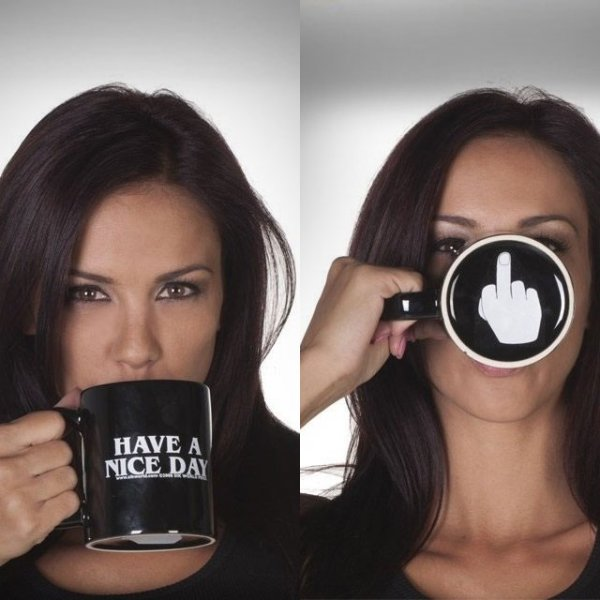 Have A Nice Day Mug Middle Finger Mug Personalized Mug for Coffee Tea
