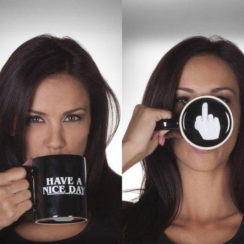 Have A Nice Day Mug Middle Finger Mug Personalized Mug for Coffee Tea