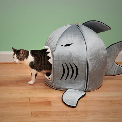 Shark Attack Pet Bed