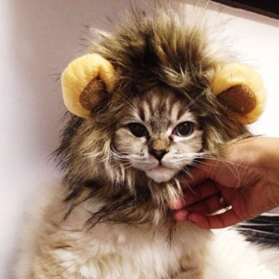 Lion Hat for Cats