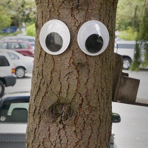 Giant Googly Eyes 6PCS