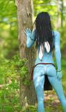 SM156 blue avatar