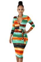 Multicolor Zip Front Midi Pencil Dress