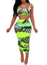 Zebra Print Colorful Bodycon Crop Top & Midi Skirt